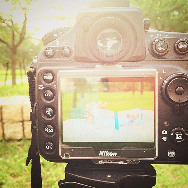 Lighthouse Photo From Instagram-出張撮影・おうちスタジオ・お外スタジオ・ホームページ制作・グラフィックデザイン制作・アルバムデザイン制作を西宮・神戸・大阪・芦屋・宝塚中心に行っているLighthouse Photoの出張広告撮影の写真-