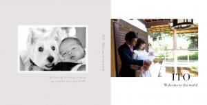 出張撮影・お外スタジオ・結婚式撮影・ホームページ制作・グラフィックデザイン制作・アルバムデザイン制作を西宮・神戸・大阪・芦屋・宝塚中心に行っているLighthouse Photoのデザイン台紙アルバムPETALサンプル201701