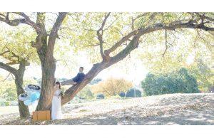 出張撮影・お外スタジオ・結婚式撮影・ホームページ制作・グラフィックデザイン制作・アルバムデザイン制作を西宮・神戸・大阪・芦屋・宝塚中心に行っているLighthouse PhotoのデザインアルバムSILVERLEAFサンプル009