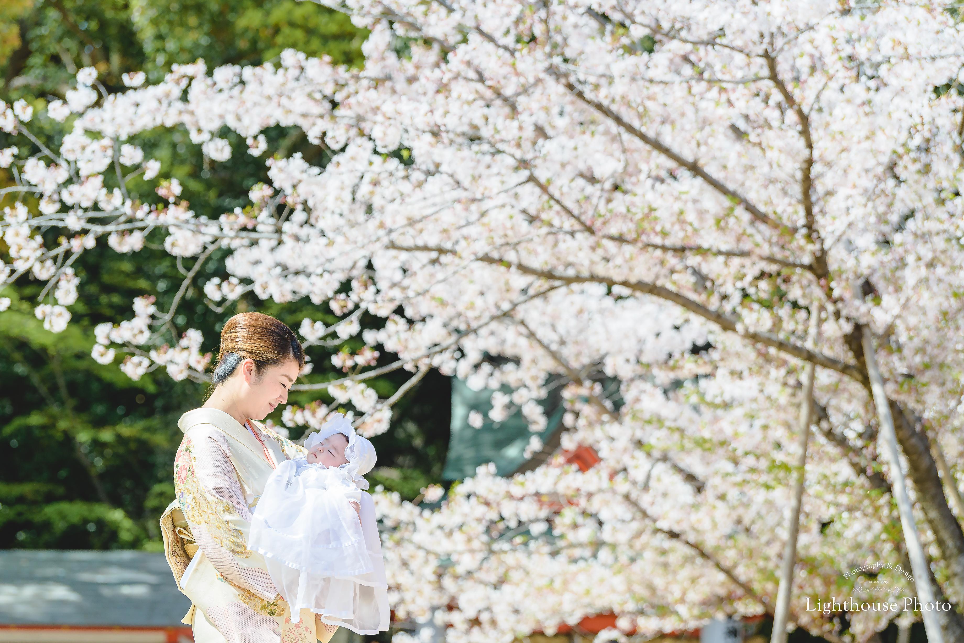 お宮参りのロケーションフォトを桜と一緒に@生田神社