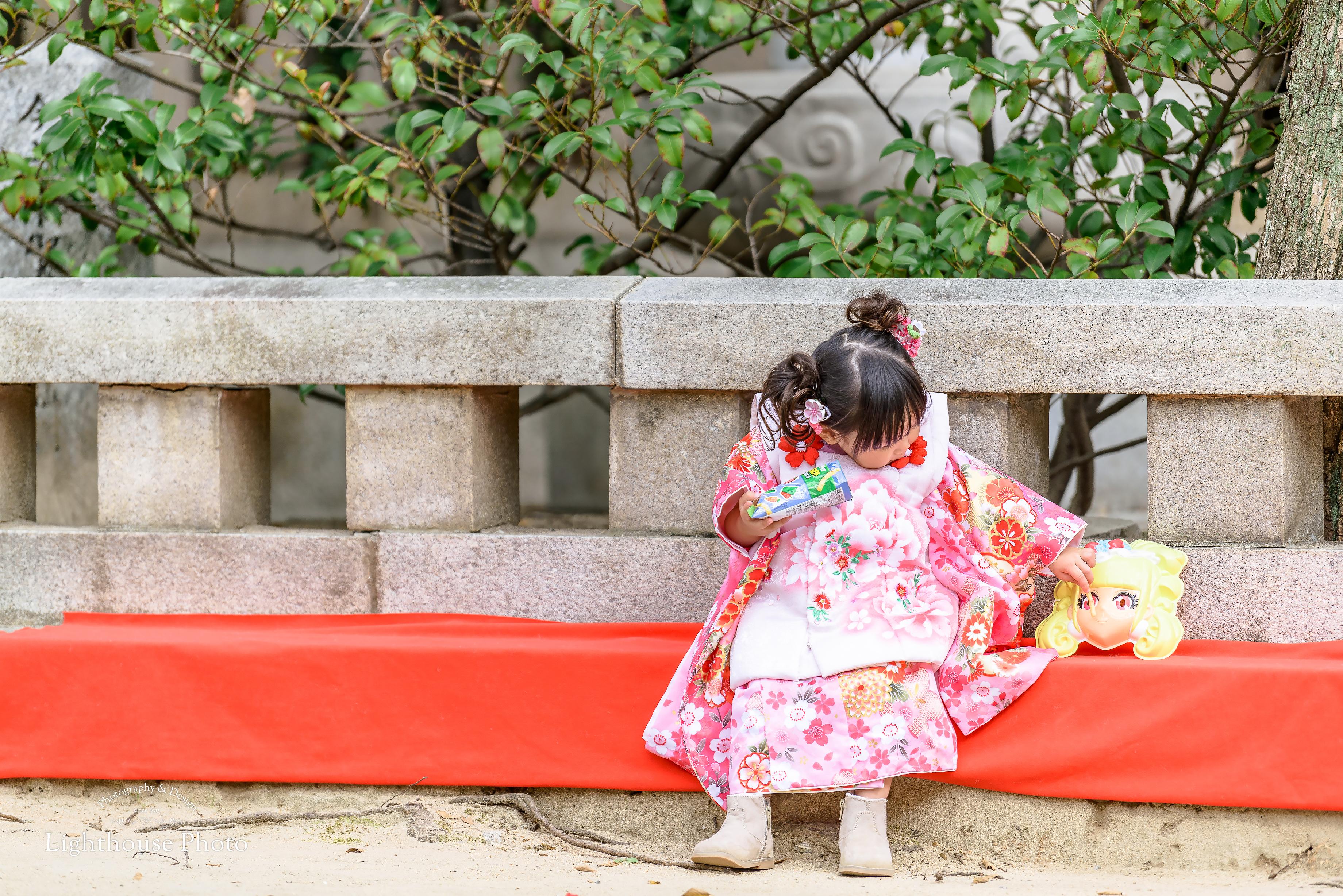 みどりのモミジと一緒に七五三のロケーション撮影@湊川神社-1